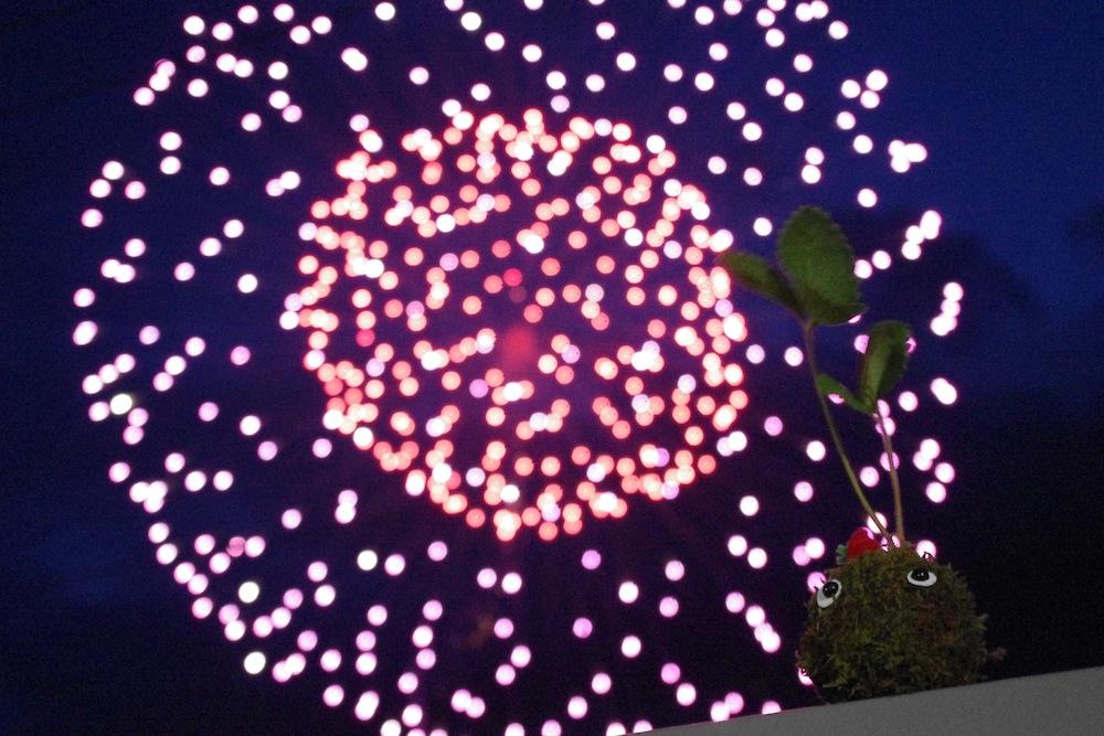 WS info:こけだま作りで東北に花火をあげる?LIGHT UP NIPPON in アースデイ東京2015@代々木公園(2015.4.18&19)