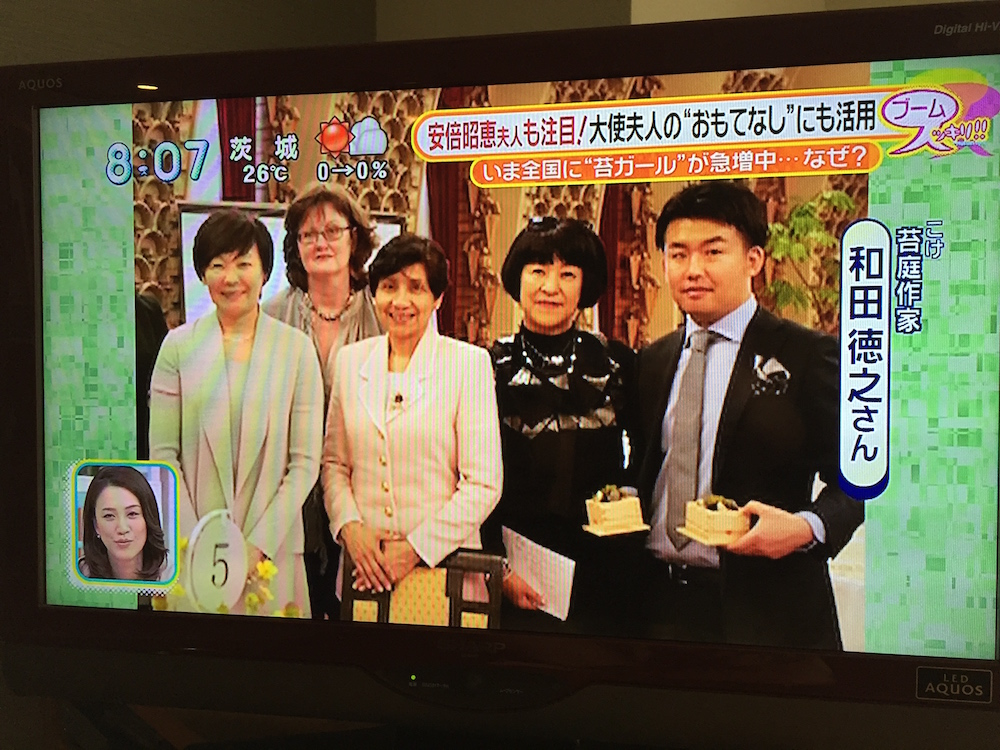 [メディア掲載]日本テレビ「スッキリ!!」苔特集でこけ庭・モスリングが紹介されました(2016.6.1)