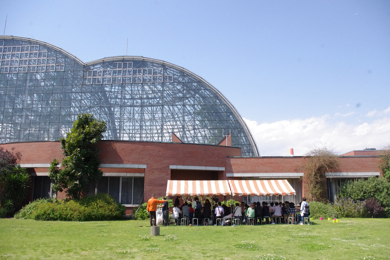 WS info:芝生の上で泥んこ遊び@夢の島熱帯植物館(5/7)
