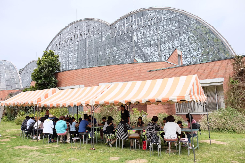 WS info:芝生の上で泥んこ遊び@夢の島熱帯植物館(9/9)